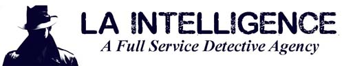 LA Intelligence, Inc.